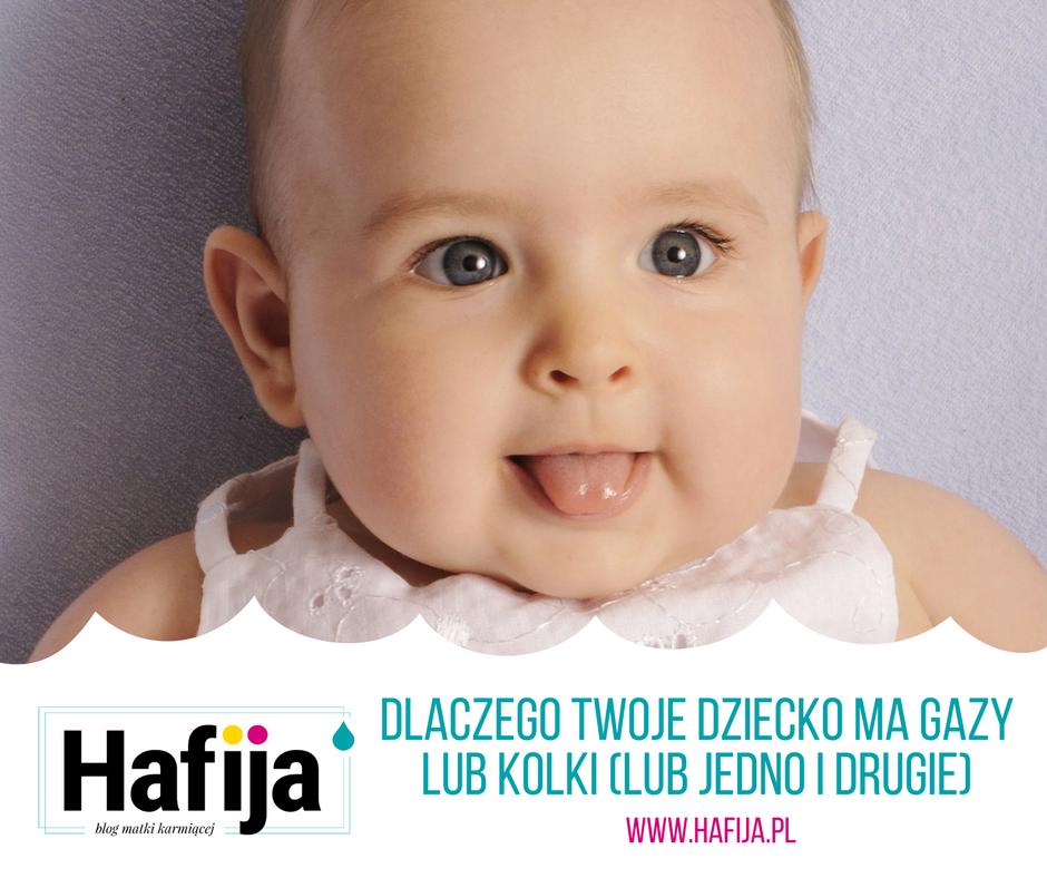 www.hafija.pl